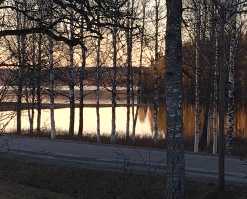 Malingsbo herrgård - Utsikt fran Tradgardsstugan